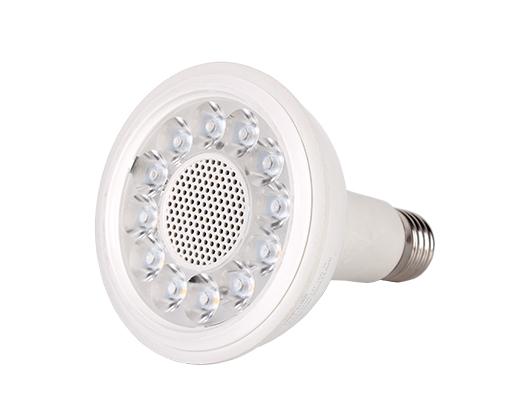 PAR30 LED 射灯